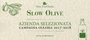 Slow Olive azienda selezionata - La Marina Olio extravergine di oliva - Pipolà