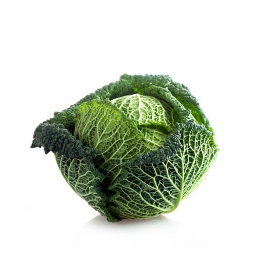 verza riccia biologica - verdura bio online - Pipolà la spesa agricola di qualità - Laboratorio agricolo ciociaro