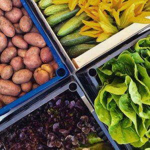 verdura pipolà resalio spesa agricola online prodotti ciociari